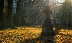 autumn-2182008_960_720.jpg